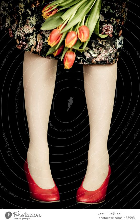 Spring with tulips Lifestyle Elegant Joy Valentine's Day Mother's Day Feminine Legs 1 Human being Flower Tulip Dress Footwear Stand Fresh Orange Red Happiness