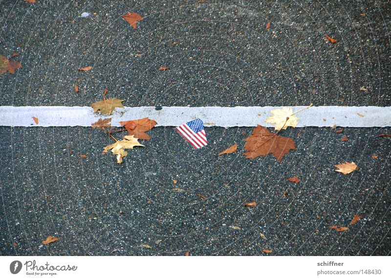 Leaf Autumn Line Hope USA Flag Lie Trash Under Americas Direction American Flag New start Second-hand Financial Crisis
