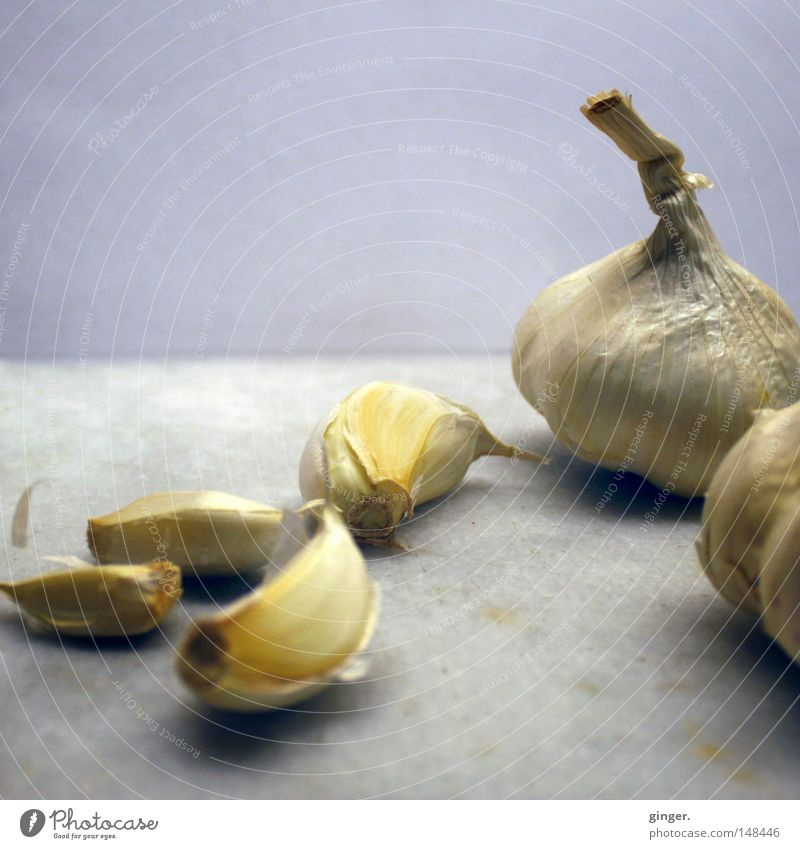Healthy, tasty and helps against vampires Delicious Gray White Garlic Odor Pleasant Demanding Hearty Meal Medicinal plant Toes Onion Bad breath Garlic bulb