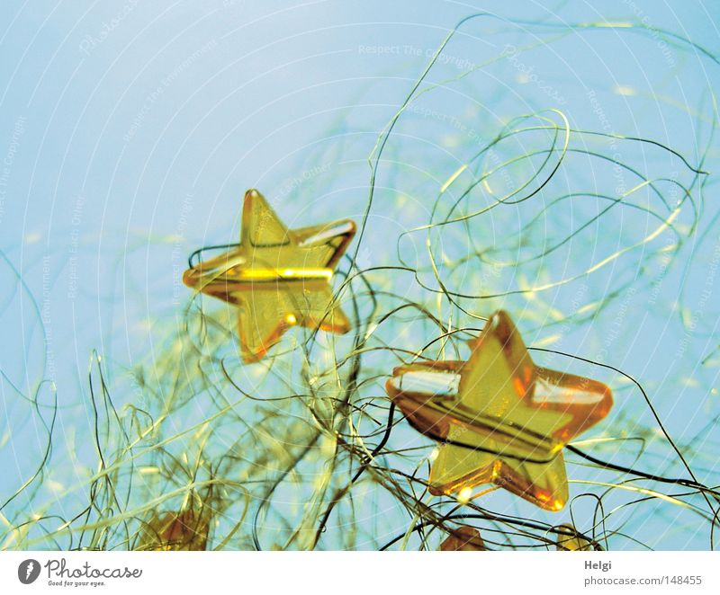 yellow glass stars in golden wire against a blue background Star (Symbol) Christmas & Advent Feasts & Celebrations Decoration Embellish Festive December Glass