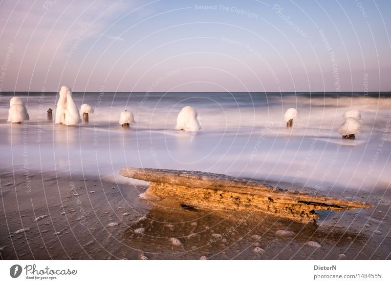 chill Environment Nature Landscape Sand Water Sky Cloudless sky Horizon Sunlight Winter Beautiful weather Wind Ice Frost Waves Coast Beach Baltic Sea Ocean Blue