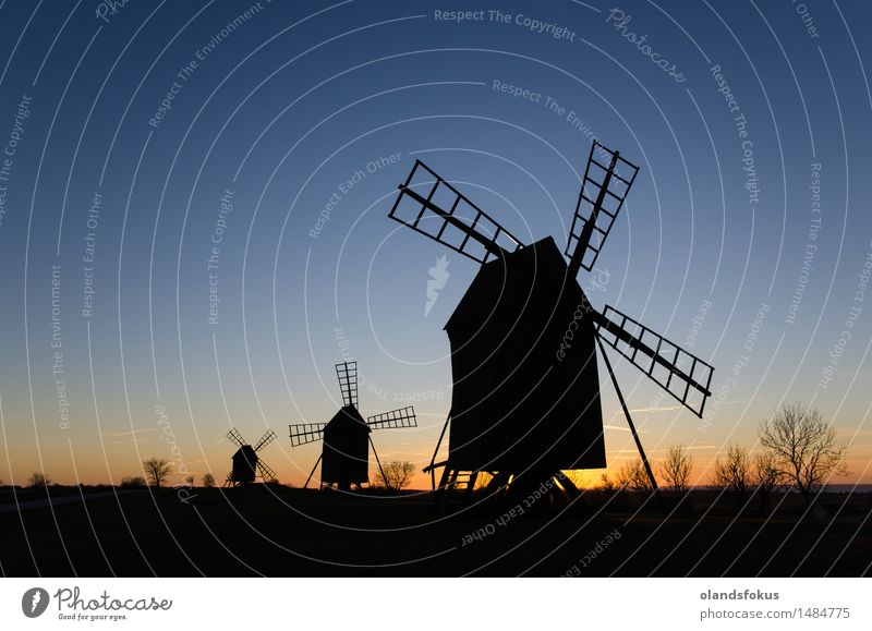 Old windmill silhouettes in a row Sky Vacation & Travel Landscape Architecture Line Tourism Technology Europe Clean Historic Tradition European Rural Nordic