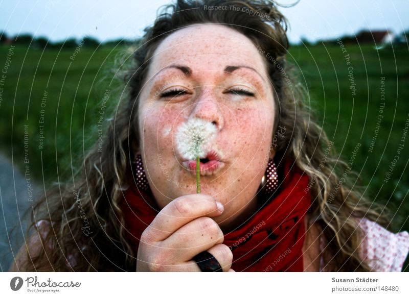 Woman Hand Summer Eyes Meadow Feminine Wood Warmth Field Blonde Arm Physics Dandelion Agriculture Blow Ring
