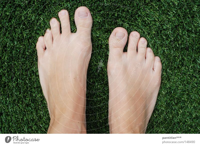 Pies Descalzos Feet Brown Vacation & Travel Toes Sunbathing Above Plastic Sand Beach Barefoot Toenail Summer Leisure and hobbies Artificial turf. green