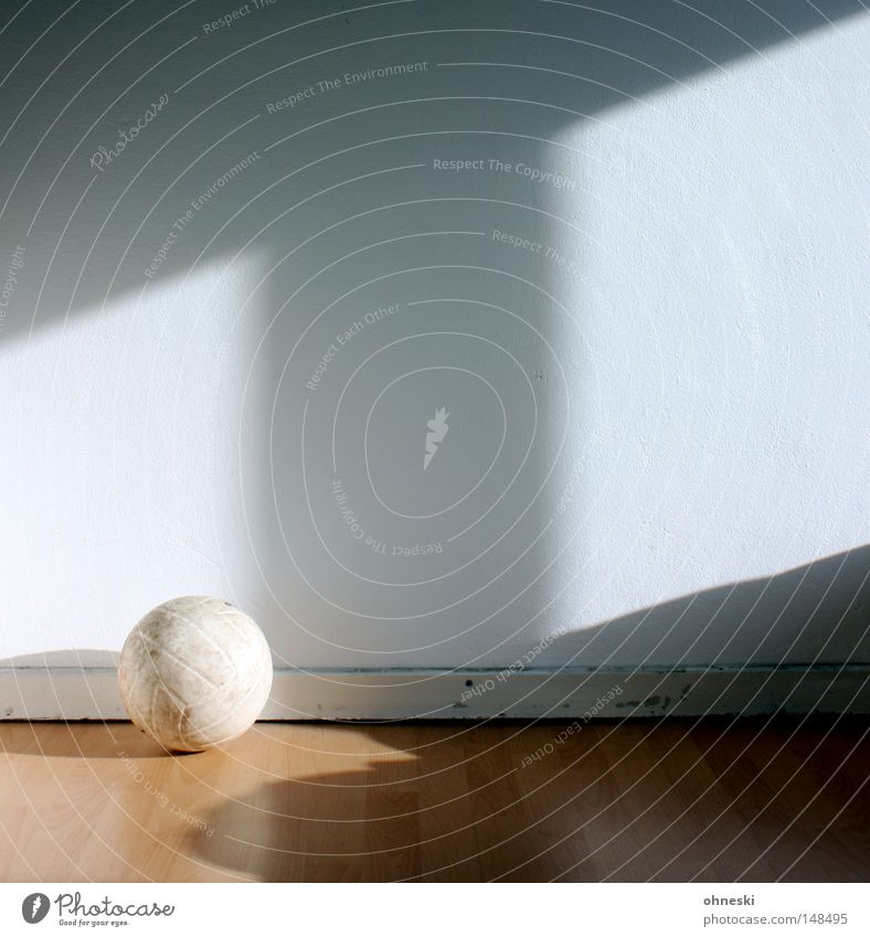 volleyball Volleyball (sport) Ball Wall (building) White Shadow Floor covering Laminate Room Light Shaft of light Window Bright Morning Leisure and hobbies