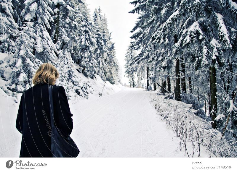 Woman Sky Nature Winter Loneliness Clouds Calm Forest Far-off places Dark Cold Snow Think Going Fear Walking