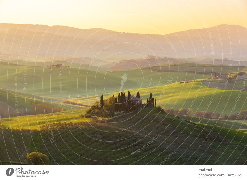 Farmhouse in Tuscany before a sunrise panorama House (Residential Structure) Nature Landscape Cloudless sky Tree Meadow Field Hill Blue Green Idyll