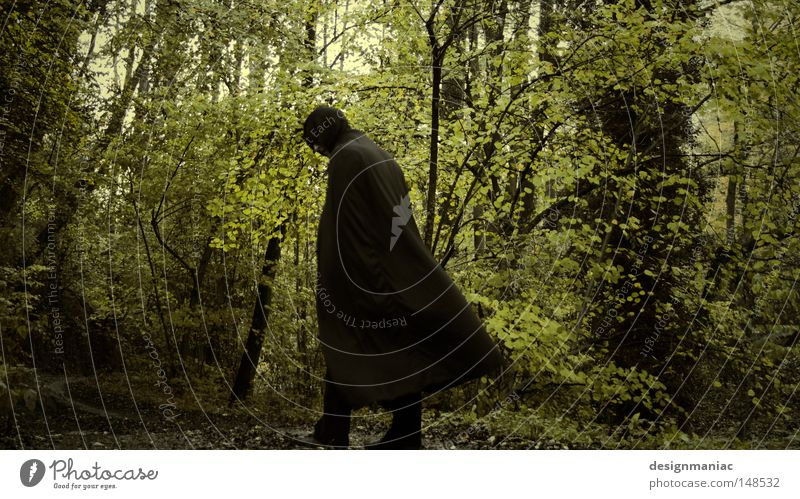 Nazgûl Lord of the Rings Forest Black Coat Man Bushes Green Brown Tree Footpath Lanes & trails Solidify Amazed Expectation Testing & Control Adventure