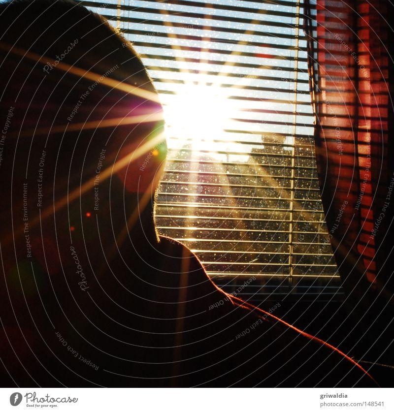 sunstroke Sun Bright Yellow Venetian blinds Window Interior shot Power Force full of punishment radiant power energetic interior equipment