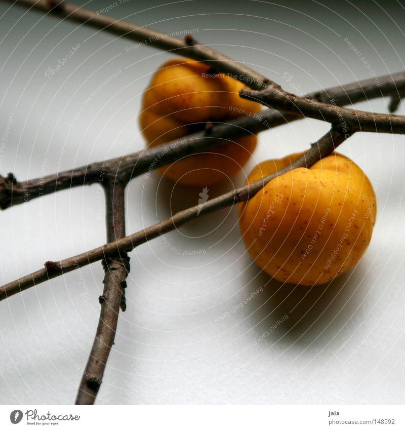 Yellow Autumn Garden Park Fruit Branch Harvest Still Life Gel Jam Nutrition Quince