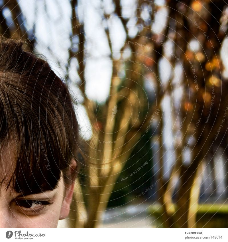 Woman Aggravation Foreign Eyes Hair Tree Garden Park Services