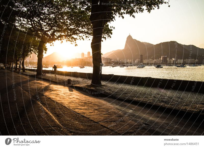 Rio De Janeiro Town Gold Rio de Janeiro Corcovado-Botafogo Bay Brazil Colour photo Subdued colour Exterior shot Copy Space right Copy Space bottom Evening