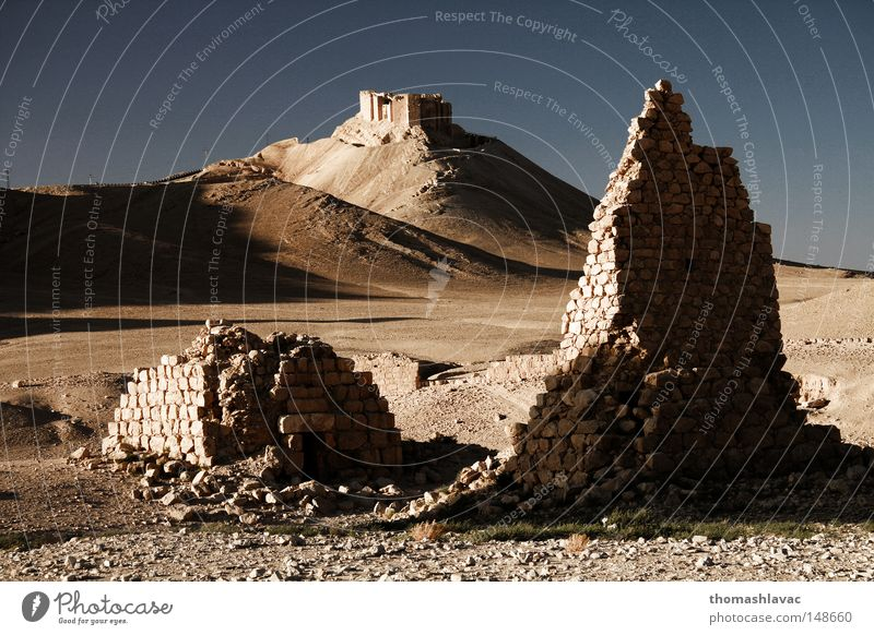 Palmyra Sand Tower Desert Asia Cemetery Dry Historic Ancient Syria Tomb