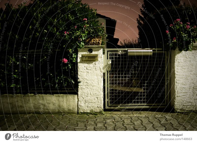 White Flower Green Plant House (Residential Structure) Loneliness Dark Autumn Gray Small Pink Door Concrete Violet Gate Sidewalk