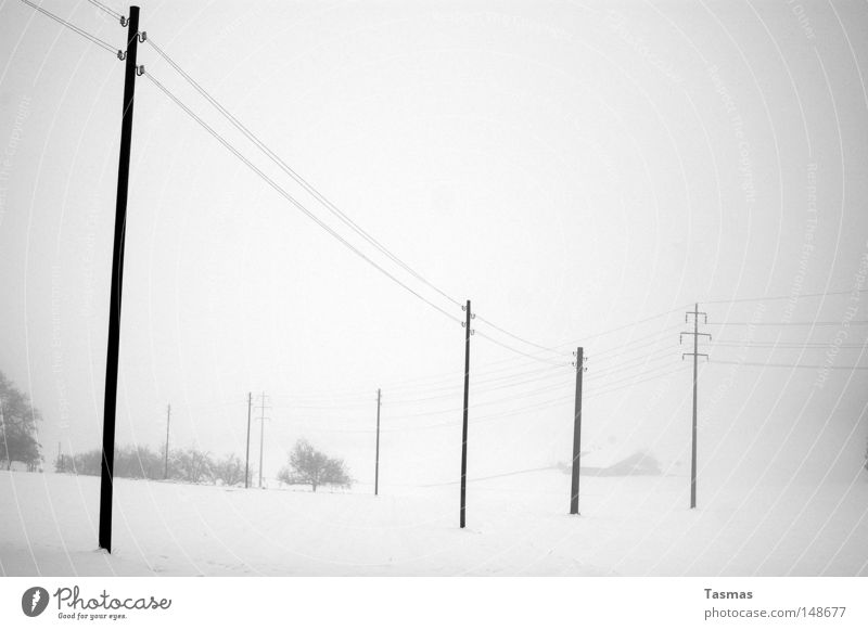 snow Far-off places Winter Snow Fog Gloomy Gray Boredom Loneliness Electricity pylon Telegraph pole High voltage power line Doomed Cover up Snow layer in grey