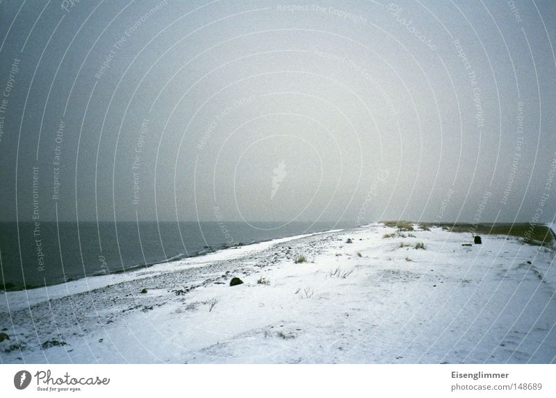 Water Ocean Beach Winter Dark Snow Coast Ice Island Frost Beach dune Dune Baltic Sea Fehmarn