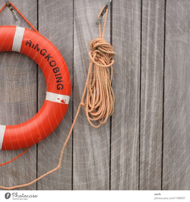 Please save me! Life belt Rescue Lifeguard Malibu String Rope Wall (building) Wood Wooden wall Drown Ocean Lake Fear Panic Safety Hasselhof drowned Water