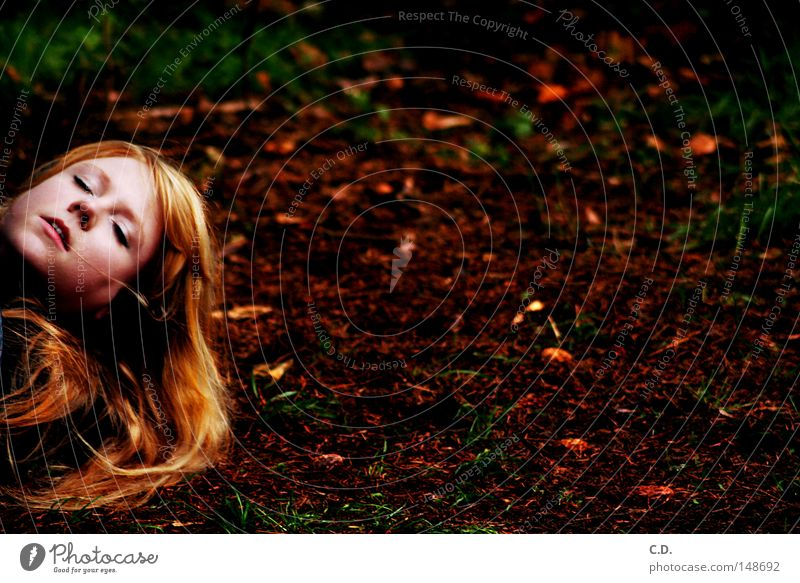 Woman Beautiful White Green Red Face Leaf Black Yellow Autumn Death Grass Hair and hairstyles Head Blonde