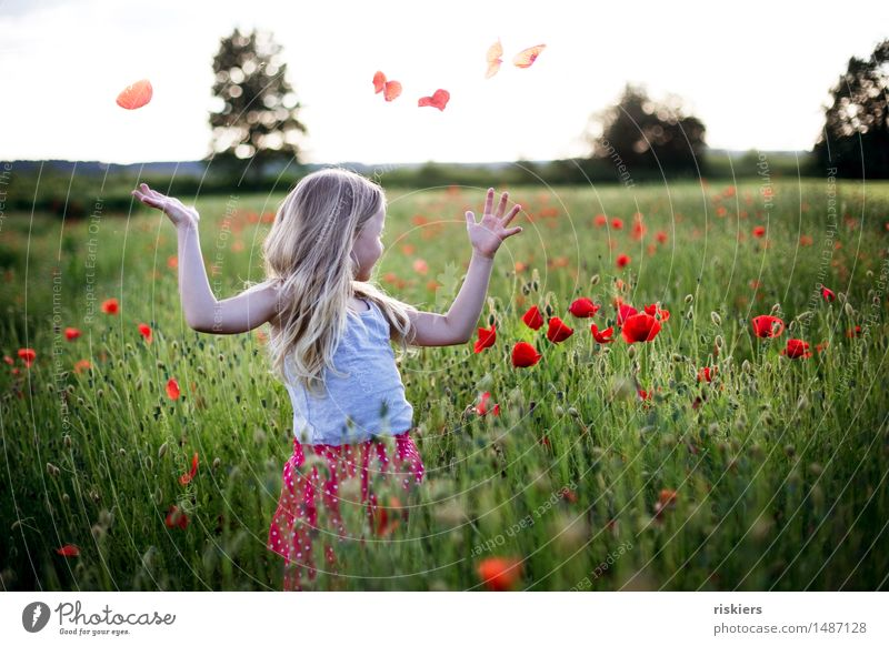 summer mood Human being Feminine Child Girl Infancy 1 3 - 8 years Spring Summer Beautiful weather Poppy field Field Blossoming Relaxation Smiling Illuminate