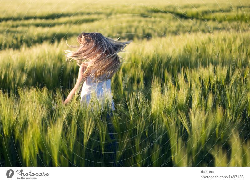 summer mood Human being Feminine Child Girl Infancy 1 3 - 8 years Nature Summer Beautiful weather Field Discover Relaxation Playing Dance Blonde Free Happiness