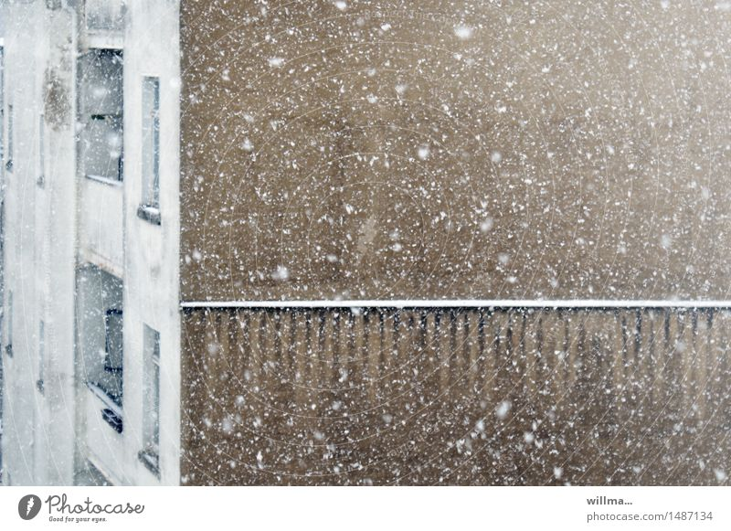 White House (Residential Structure) Winter Wall (building) Snow Brown Snowfall Snowflake Gable end