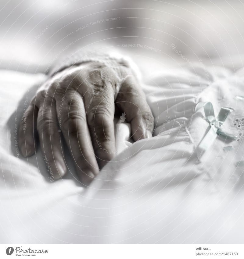 Hand of a senior citizen in a hospital bed Female senior Human being Medical treatment Care of the elderly age Nursing Illness Hospital Health care Woman Adults