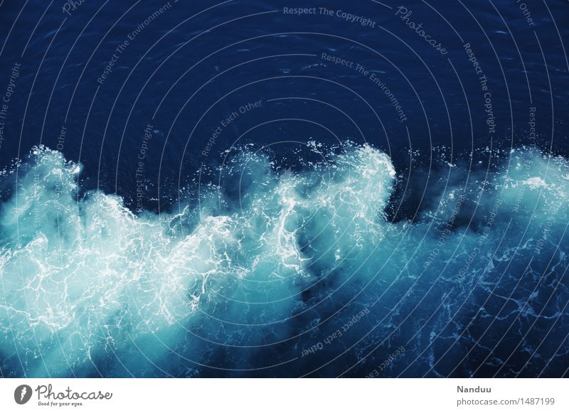 Nature Summer Water Ocean Environment Movement Waves Elements Clarity Dynamics Sailing Maritime White crest Cruise Gulf of Mexico