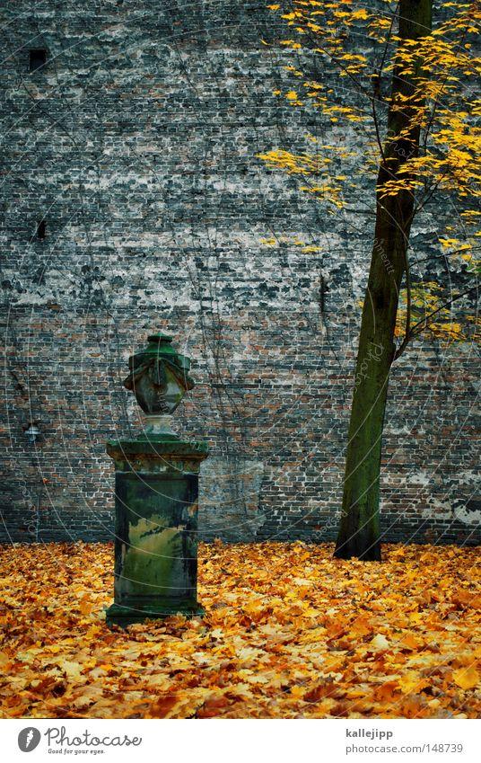Hand Tree Autumn Life Death Religion and faith Back Fog Fingers Grief Education Peace Fluid Monument Seasons Statue