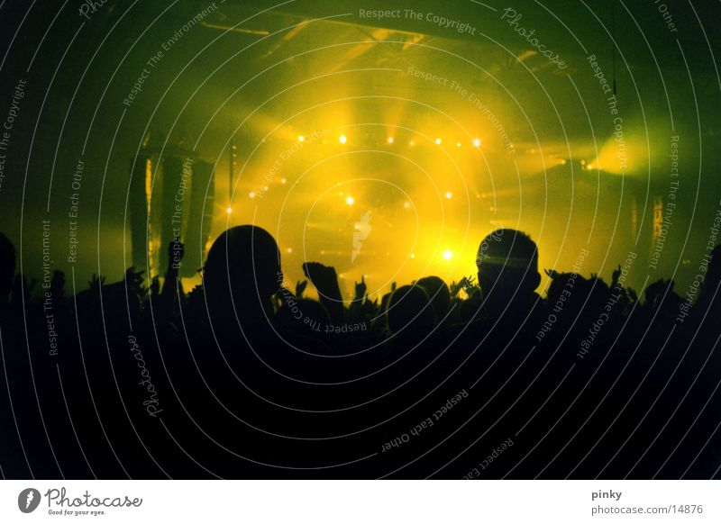Green Lamp Party Music Dresden Concert Audience Sound Floodlight Live Light show Saxony