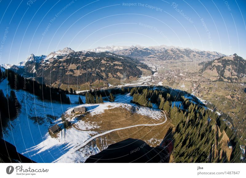 Beautiful view Lifestyle Relaxation Calm Trip Far-off places Mountain Sports Paragliding Landscape Elements Air Sky Winter Beautiful weather Fir tree Forest