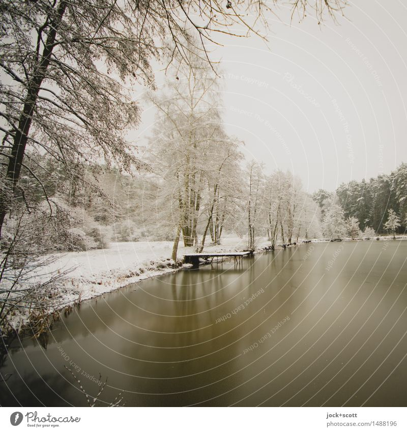quite lakefront Winter vacation Nature Sky Ice Frost Snow Forest Lakeside Franconia Authentic Cold Natural Beautiful White Secrecy Romance Calm Wisdom Idyll