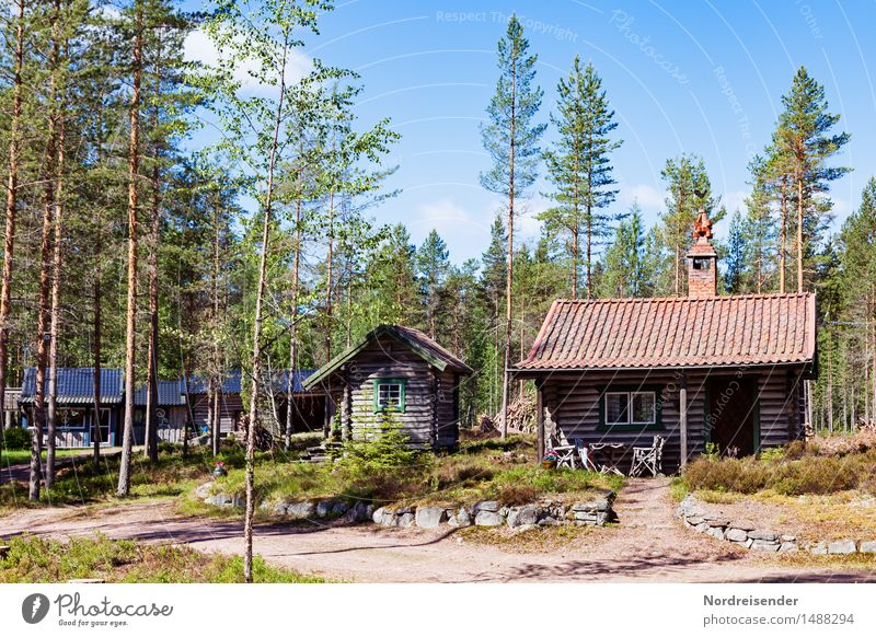 Northern Europe Harmonious Sauna Vacation & Travel Tourism Summer Nature Beautiful weather Forest House (Residential Structure) Hut Architecture Lanes & trails