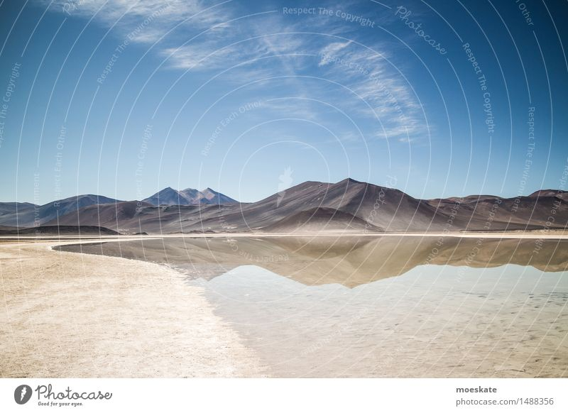 Andes Landscape Elements Earth Sand Air Water Sky Clouds Summer Beautiful weather Blue Brown Chile highlands Mountain Lake Lakeside Reflection Salar de Atacama