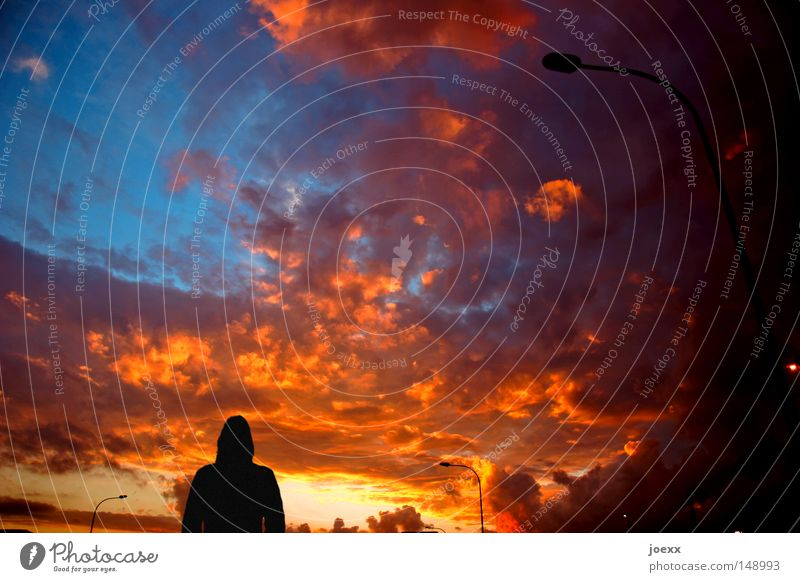 Sky Clouds Lamp Orange Going Young woman Sunrise To go for a walk Sunset Street lighting Dusk Goodbye Disaster Beam of light Celestial bodies and the universe