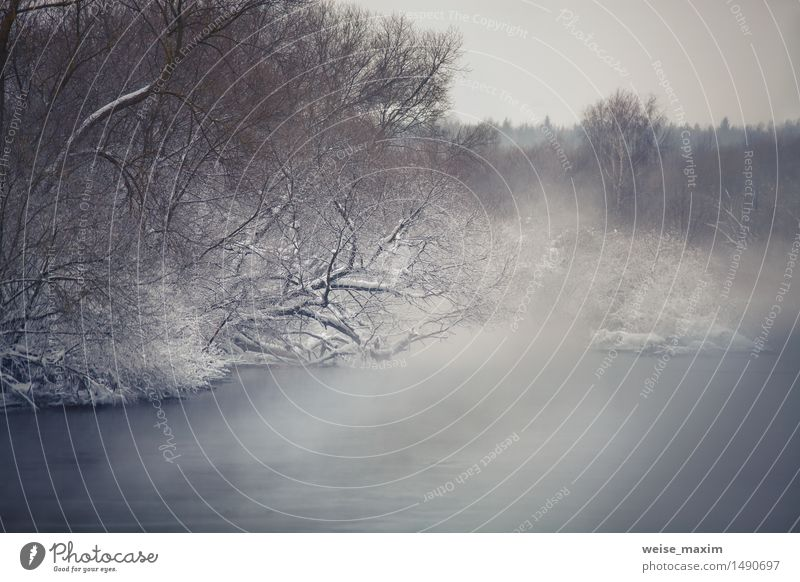 Misty winter river. Winter fog over the river Nature Beautiful Water White Tree Landscape Clouds Winter Forest Black Cold Snow Coast Gray Brown Ice