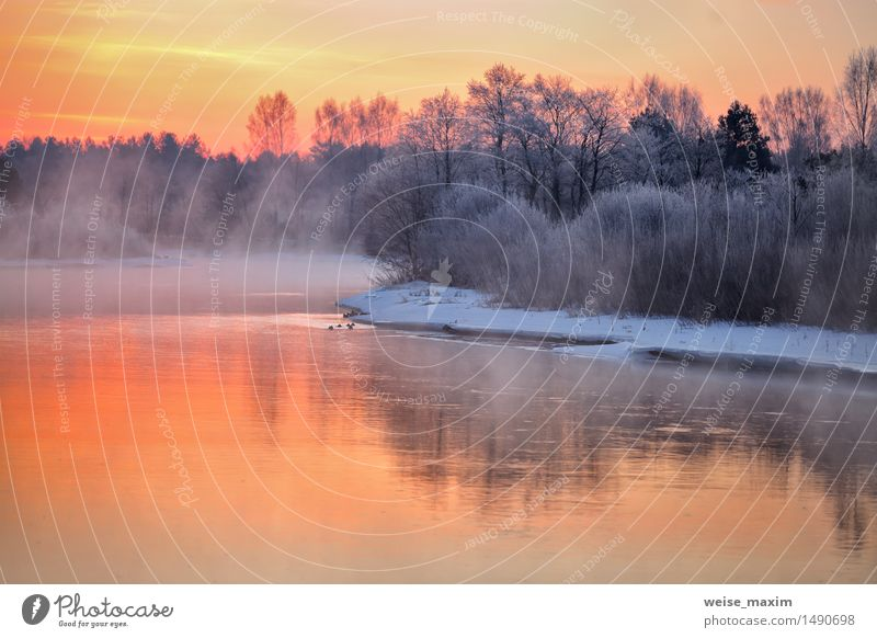 Misty winter dawn on the river. Belarus Winter Snow Winter vacation Nature Landscape Water Sky Clouds Fog Ice Frost Tree Bushes Forest River Skyline Blue Yellow