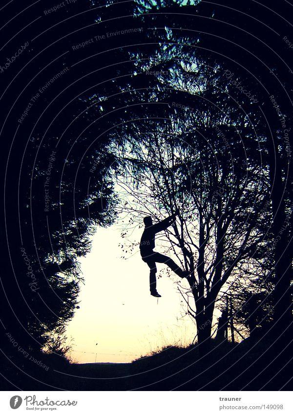 Human being Sky Man Tree Sun Leaf Adults Forest Autumn Meadow Death Dark Landscape Mountain Jump Esthetic