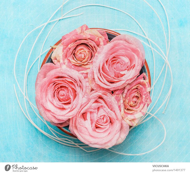 Nature Flower Blossom Style Background picture Feasts & Celebrations Pink Design Decoration Birthday Wellness Rose Bouquet Aromatic Valentine's Day Mother's Day