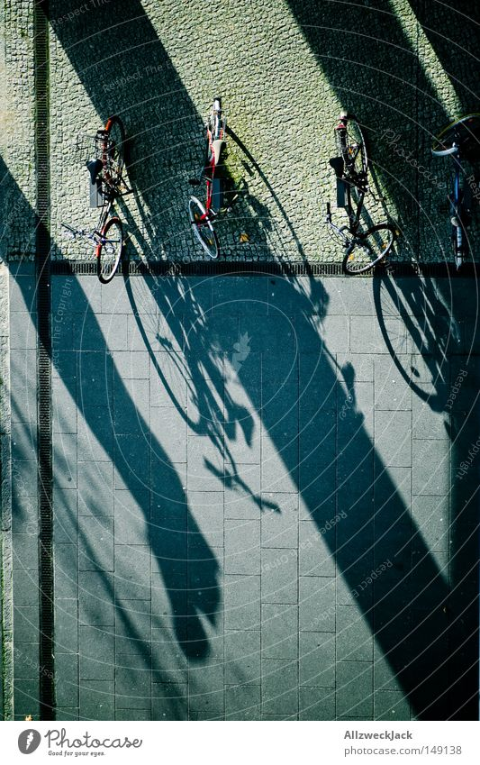 shadow parker Bird's-eye view Bicycle Shadow Sidewalk Pattern Bicycle lot Parking Autumn Transport Paving stone