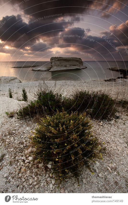 Mediterranean coast Sky Ocean Plant Summer Beach Clouds Stone Coast Asia Syria Mediterranean sea Near and Middle East