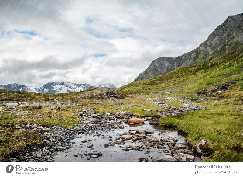Wild Alaska Vacation & Travel Tourism Far-off places Expedition Camping Mountain Hiking Nature Landscape Plant Water Sky Clouds Spring Summer Meadow Bog Marsh
