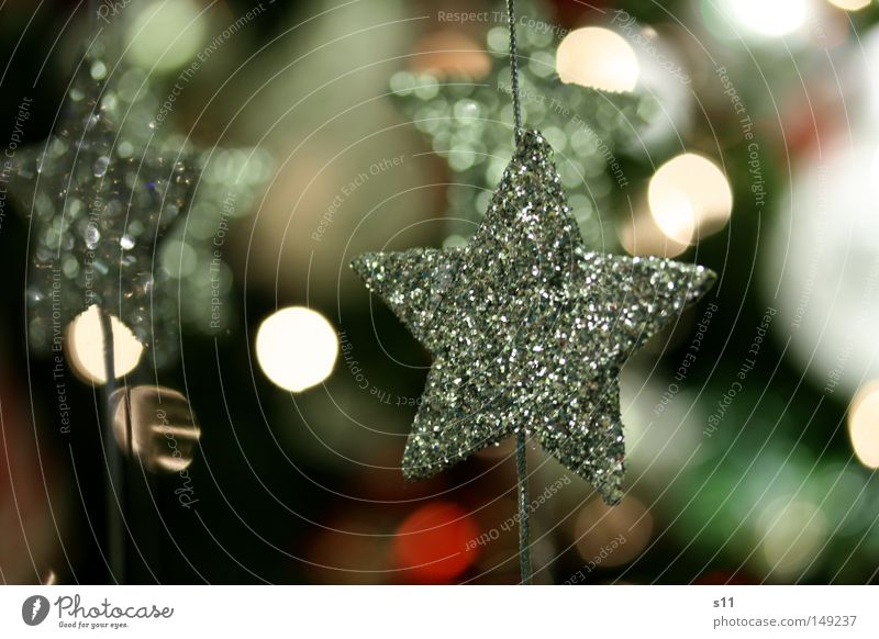 star shine Star (Symbol) Christmas star Christmas & Advent Embellish Christmas decoration Christmas tree decorations Glittering Handicraft Family party