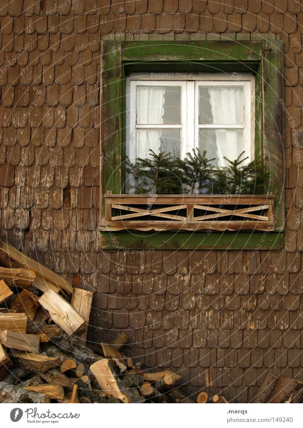 28.12. Colour photo Subdued colour Exterior shot Long shot Living or residing House (Residential Structure) Redecorate Tree Building Window Wood Historic Cold