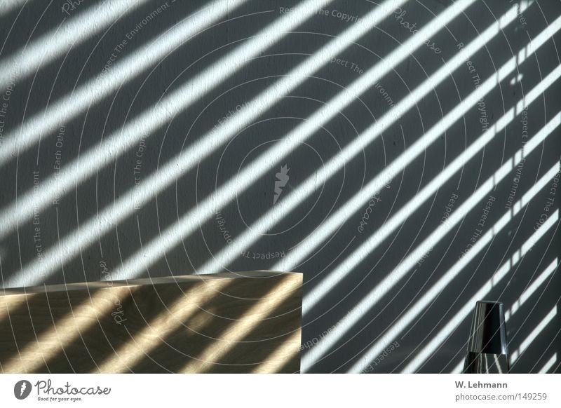 White Sun Black Colour Emotions Wood Warmth Metal Concrete Stripe String Sewing thread Chrome Birch tree
