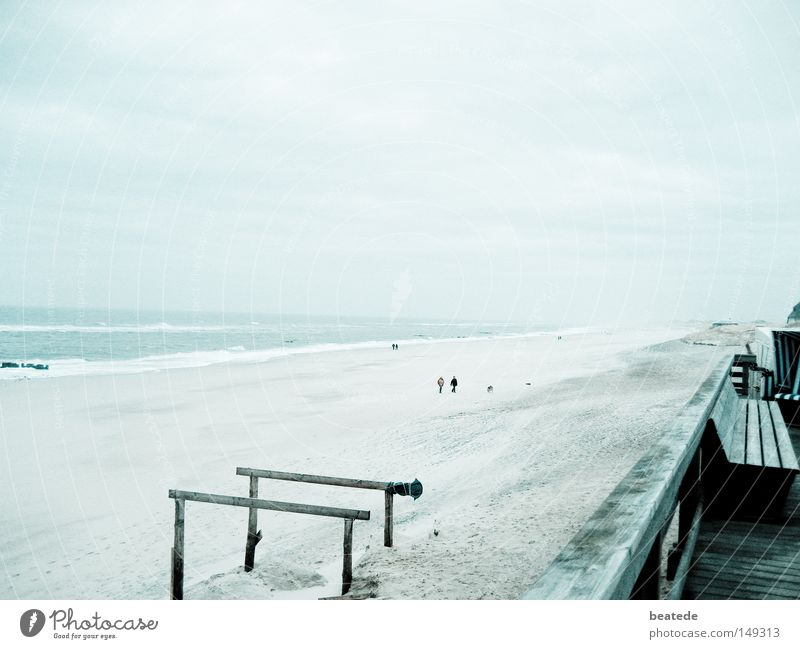 Ocean Blue Winter Beach Vacation & Travel Far-off places Cold Sand Moody Coast Earth Gloomy To go for a walk North Sea Sylt Westerland