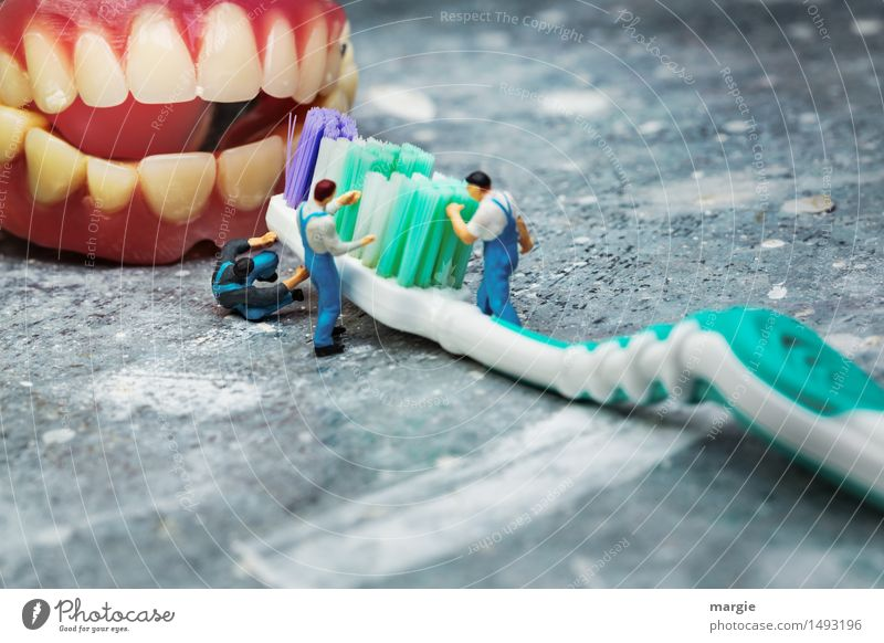 Miniwelten - Brushing your teeth Craftsperson Doctor Workplace Construction site Health care Human being Masculine Man Adults Teeth 3 Green Pink Cleanliness