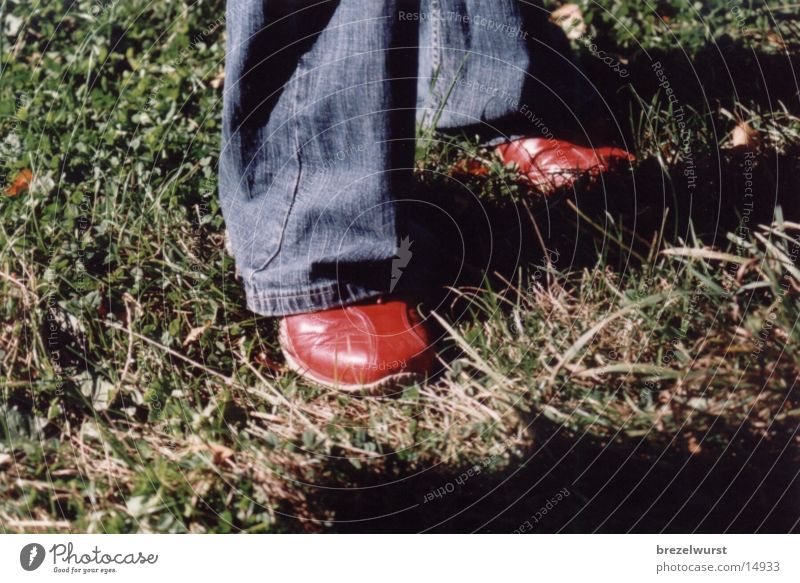 red shoes Footwear Red Grass Human being Feet
