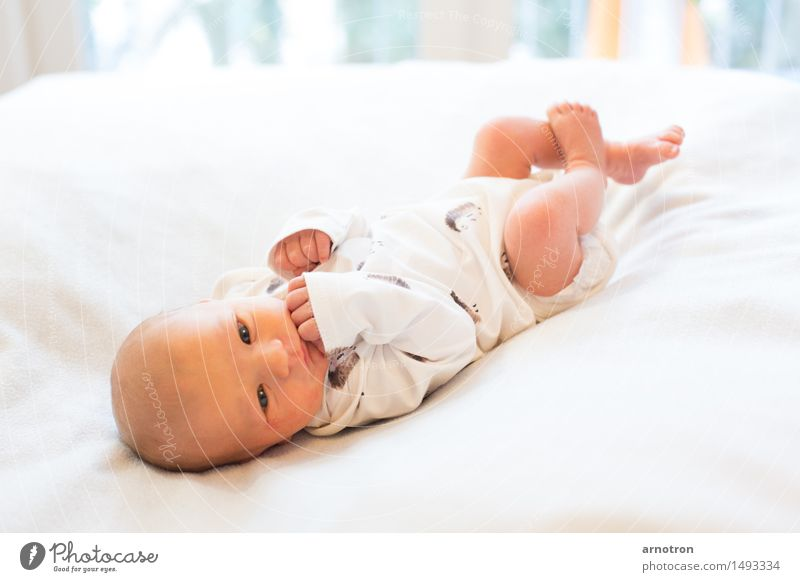 Human being White Relaxation Face Flying Masculine Baby Warm-heartedness Trust 0 - 12 months