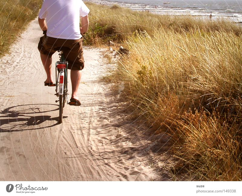 Hiddensee Relaxation Vacation & Travel Cycling tour Summer Summer vacation Beach Ocean Bicycle Human being Masculine Man Adults Back 1 Environment Nature