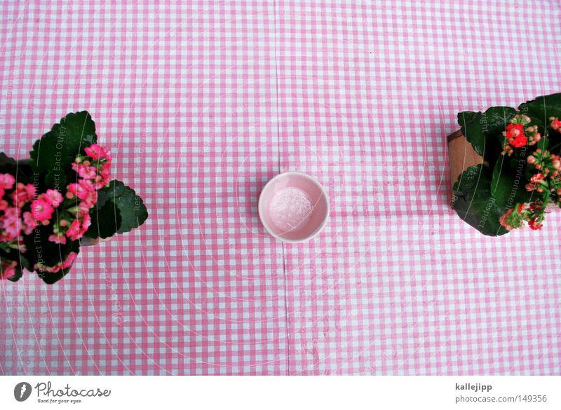White Red Flower Autumn Orange Pink Birthday Table Decoration Retro Café Box Restaurant Blanket Infatuation